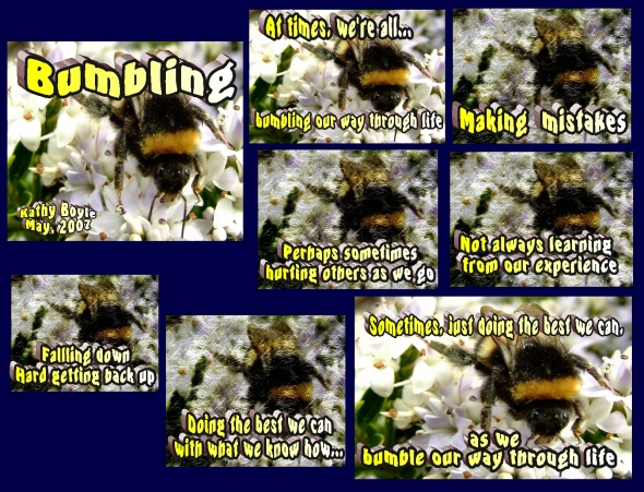 Bumbling our way through life...learning as we go