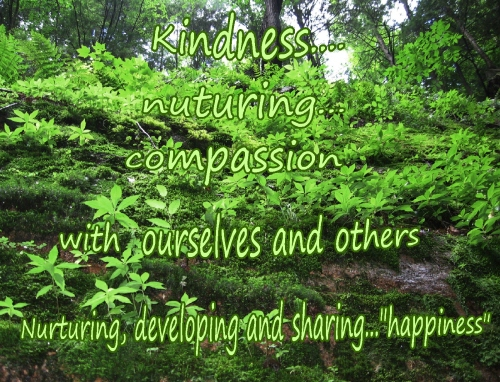 kinder with ourselves nurturing and sharing happiness
