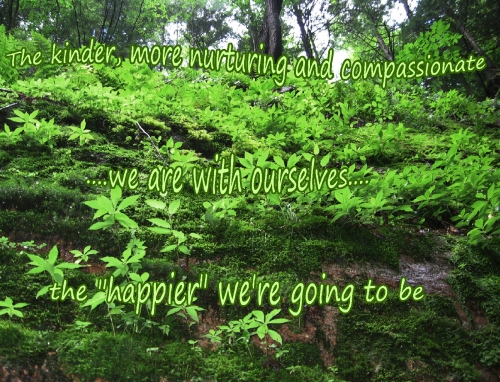 the kinder we are with ourselves, the happier we'll be