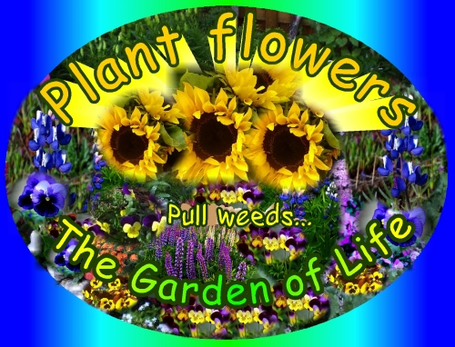 Plant Flowers, Pull Weeds...The Garden of Life