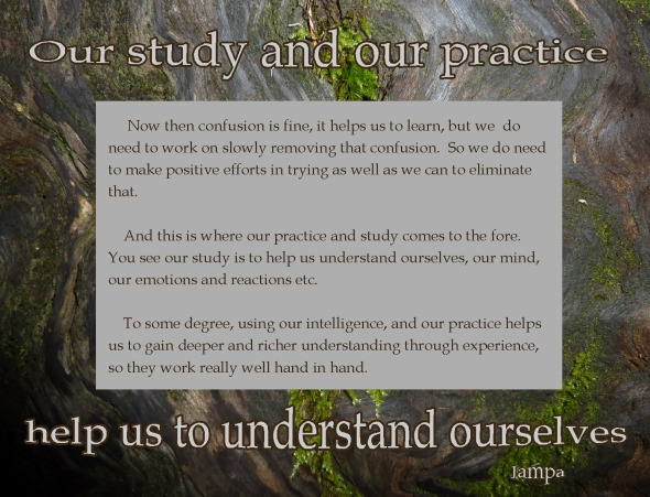 confusion leads to study and practice leads to understanding and wisdom