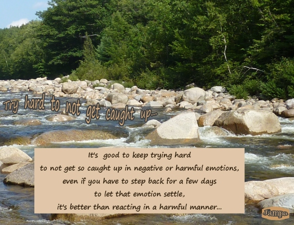 advice try hard to  not get caught up in negative emotions