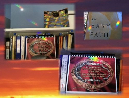 Rinpoche's book cover and rainbow lights 44