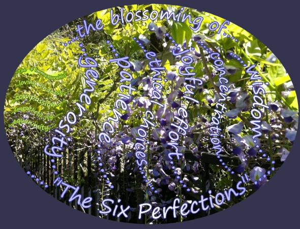 the blossoming of the six perfections...wisteria